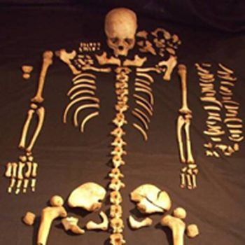 A skeleton discovered during a research excavation at Fin Cop Iron Age hillfort in Derbyshire. © Copyright ARS Ltd 2018