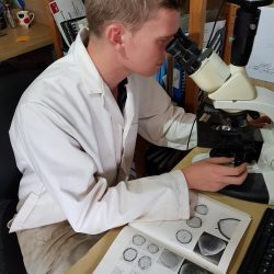 Luke, our Palaeoenvironmentalist, analysing pollen samples using a microscope. © Copyright ARS Ltd
