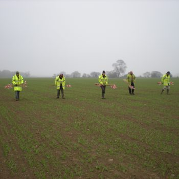 Fieldwalking involves a line of people walking steadily across a field, observing the ground as they go and marking any finds with canes, the location of which are then surveyed before the finds are collected. © Copyright ARS Ltd.