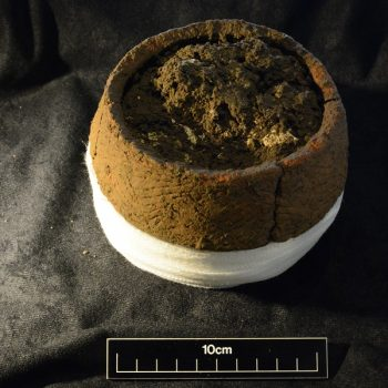 This small urn containing a cremation was found upturned within a larger urn (scale = 10cm). © Copyright ARS Ltd