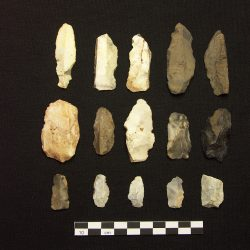 Edge trimmed blades made from a combination of flint and local chert (scale = 10cm). © Copyright ARS Ltd