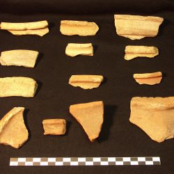 Rim sherds from Roman pottery vessels (scale = 10cm). © Copyright ARS Ltd