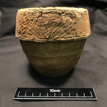A Collared Urn recovered during the excavations which contained one of the cremation burials.